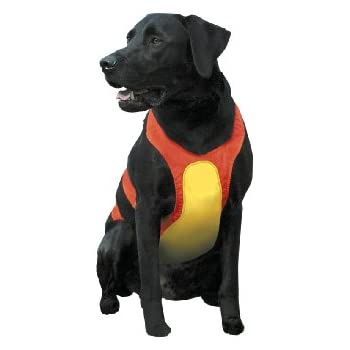 Remington Orange Large Chest Protector for Dogs
