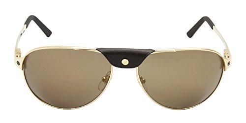 Cartier - SANTOS DE CARTIER ESW00064, Aviator, metal, men, BRUSHED GOLD BROWN LEATHER/GOLD(ESW00064), 61/16/135 - Cartier Eyewear