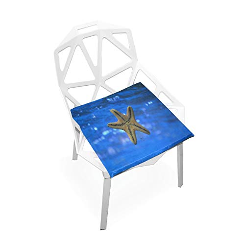 - Pingshoes Seat Cushion Starfish are Coming Back Chair Cushion Offices Butt Chair Pads Square Car Mat for Indoor