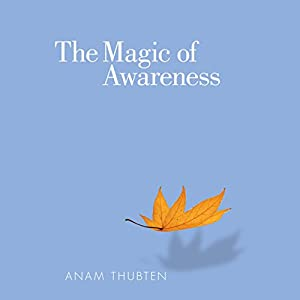 The Magic of Awareness Hörbuch