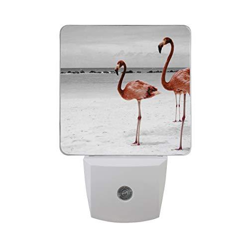 OuLian Night Light Fabulous Flamingo White Snow Led Light Lamp Hallway, Kitchen, Bathroom, Bedroom, Stairs, DaylightWhite, Bedroom, Compact