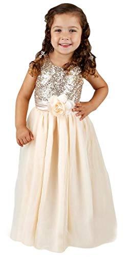 Bow Dream Flower Girl's Dress Sequins Tulle Gold 3T