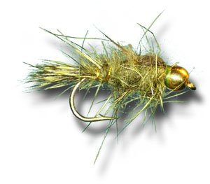 ar Olive Fly Fishing Fly - Size 14 - 6 Pack ()