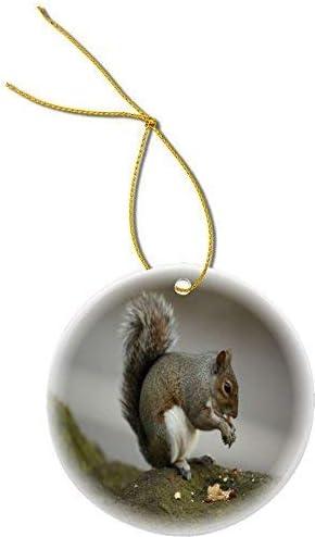 Amazon Com Yilooom Squirrel Eating Nut Round Shaped 3 Porcelain Flat Ornament Christmas Holiday Love Anniversary Newlyweds Keepsake Home Kitchen