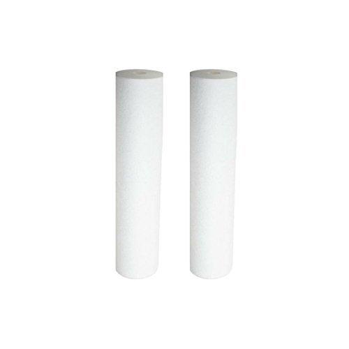 Pentek DGD-5005-20 Dual Gradient Sediment Water Filters (20'' x 4.5'') - 2 Pack