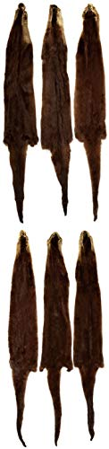 Professionally Tanned Otter Fur Pelt + 36 Inches Long - 6 Pack ()