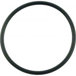 Pentair Whisperflo Pump Diffuser O-Ring 071444 P24262