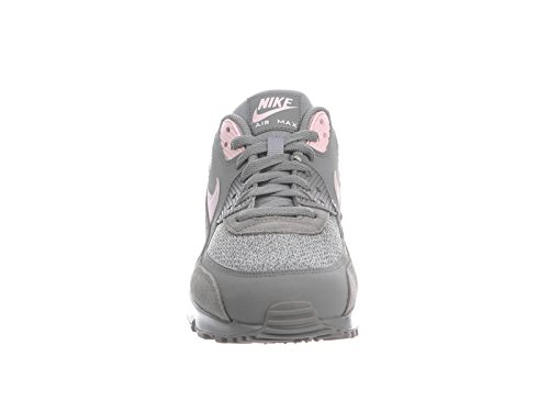 Nike Mens Air Max 90 Dust / Artico Rosa / Scarpe Casual In Pelle Vela 9 D (m) Us