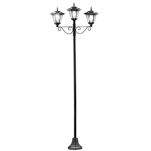 Outdoor Triple Lamp Post in Florida - 9