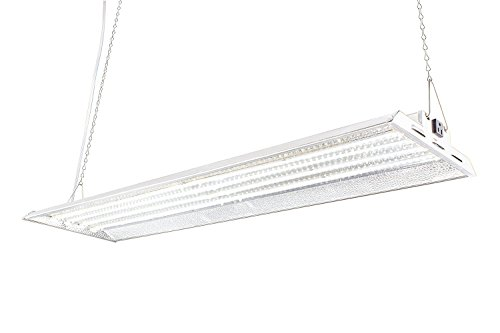 Durolux DLED844W LED Grow Light | 4 Feet by 1 Foot | 160W (0.5 W LED x 320 Pcs) with White 5500K FullSun Spectrum and 20000 Lux Great for Seeding and Veg Growing! Over 50% Energy Saving!