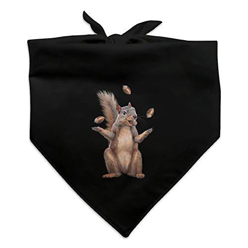 (Graphics and More Squirrel Juggling His Nuts Crazy Funny Dog Pet Bandana - Black)