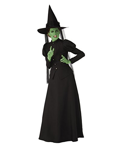 (Rubie's Super Womens Deluxe Wicked Witch Costume)