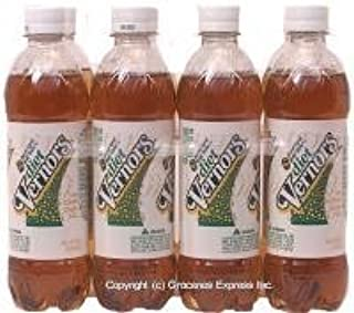 product image for Diet Ginger Soda (Ale) by Vernor's