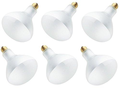 65 Watt BR40 Incandescent Flood Light Bulb 2700K E26 (Medium) Base (6-Pack) - - Amazon.com