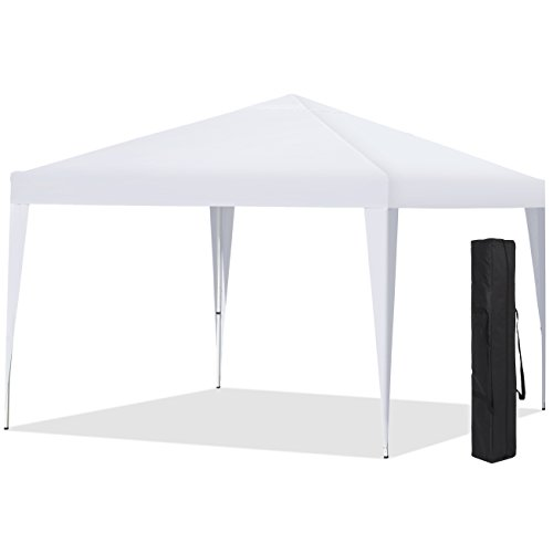 Best Choice Products Canopy Carrying