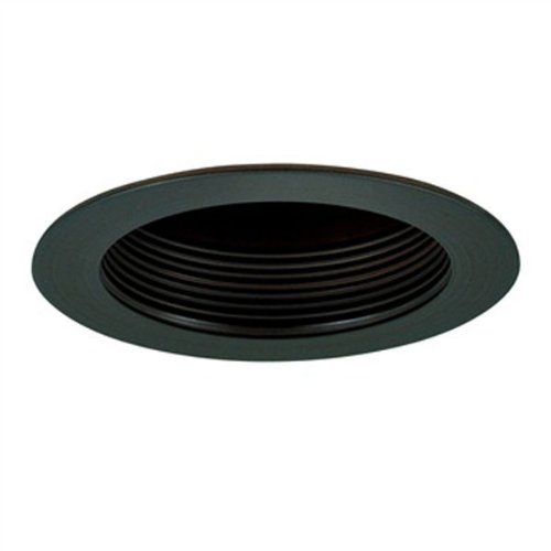 Specular Clear Cone (4 in. - Baffle Cone Reflector and Ring - Black Finish/Specular Clear Reflector - PLT PTS4230BB)