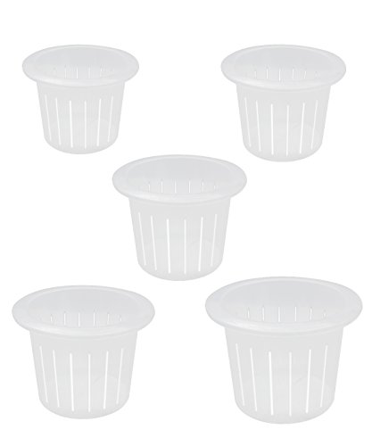 coisound 1688 Orchid Breathable Slotted Clear Plastic Pot - Growers Assortment (10 pots - Two of Them are 4