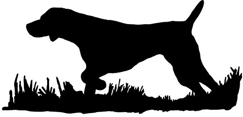 pointer auto decal - 5