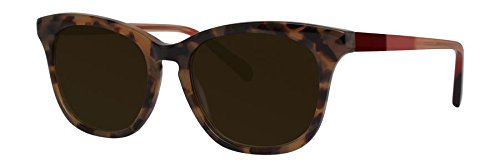 VERA WANG Sunglasses V448 Sunset Tortoise - Wang Sunglasses