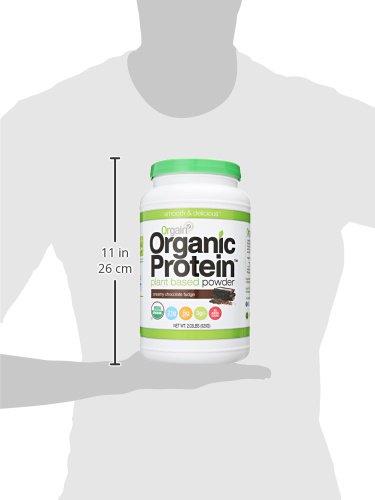 Large Product Image of Orgain Organic Plant Based Protein Powder, Creamy Chocolate Fudge, Vegan, Gluten Free, Kosher, Non-GMO, 2.03 Pound, Packaging May Vary