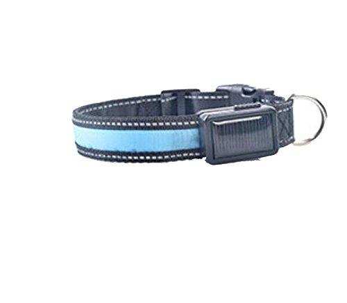 LED solar light collar charging flashing pet supplies , bluee