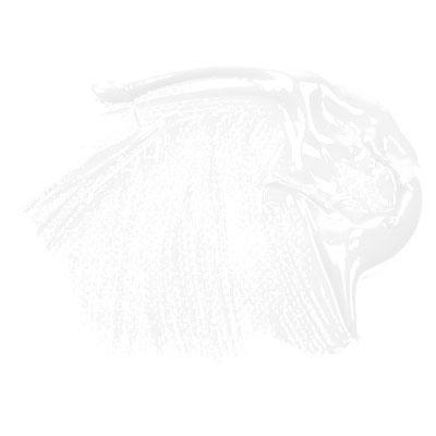 Daler - Rowney System 3 500ml Paint Ink Pot - Titanium White Daler-Rowney DR129500009