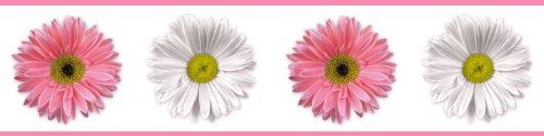 RoomMates RMK1012BCS Flower Power Peel and Stick Wall (Gerber Daisy Border)