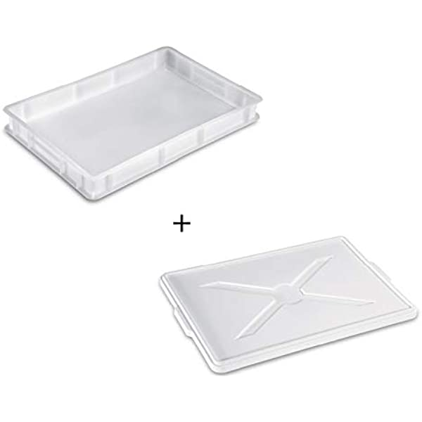 Giganplast - Caja para masas + tapa de plástico - Modelo Service - Dimensiones: 30 x 40 x 10 cm - Color blanco: Amazon.es: Hogar