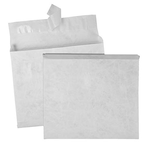 Plain Expansion Envelopes - Survivor Tyvek Booklet Expansion Mailer, 10