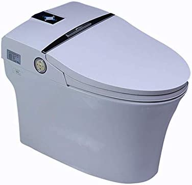Pleasing Smart Bidet Toilet Integrated Flip Smart Heating Toilet Lamtechconsult Wood Chair Design Ideas Lamtechconsultcom