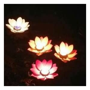 Lilith li Festive Party Solo Pond Water Blew Lamp Wishing Lamp Lotus Flower Lotus Lamp Pray for blessings 20PCS 2