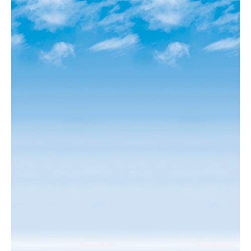 Fadeless PAC56935 Bulletin Board Art Paper, Wispy Clouds, 48