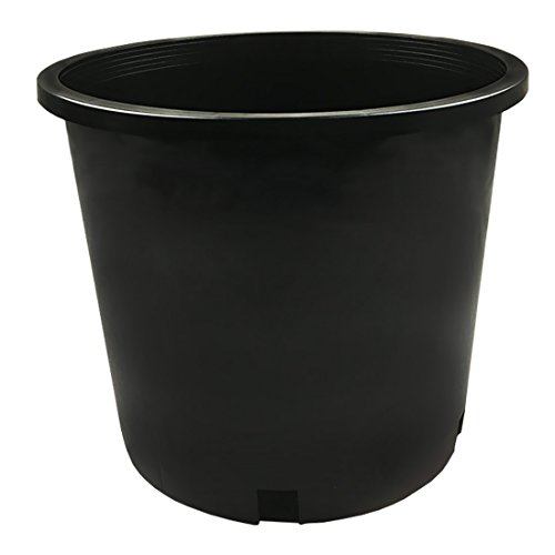 CaliPots 20-Pack 5 Gallon Premium Black Plastic Nursery Plant Container Garden Planter Pots (5 Gallon) by Calipots (Image #1)
