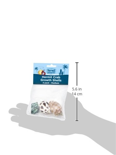 Flukers-Hermit-Crab-Growth-Shells-Medium-3-Pack