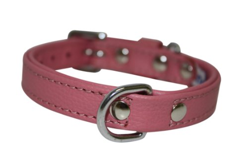 Leather Dog Collar, Padded, Double Ply, 12