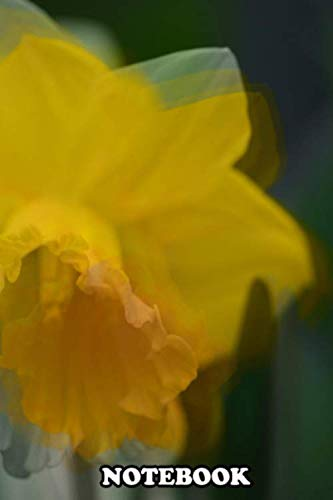 """Notebook: The Other Day I Shot So Many Shots Of Daffodils That Wh , Journal for Writing, College Ruled Size 6"""" x 9"""", 110 Pages"""