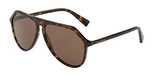Dolce & Gabbana Men's DG4341 Havana/Brown One Size