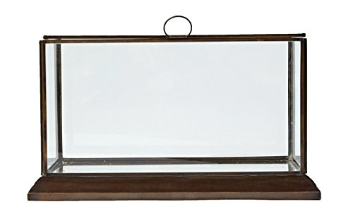 Glass Display Box (Creative Co-op DA6535 Metal Framed Glass Display Box)