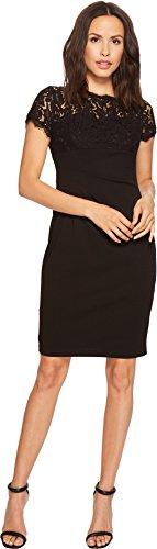 Black Dress Adrianna Papell (Adrianna Papell Women's CYNTHA LACE and Kint Crepe Sheath, Black, 8)