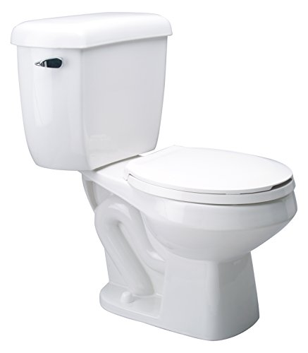 Zurn Z5577 Dual Flush, Round Front Pressure Assist, 1.6/1.0 gpf, Two-Piece Toilet ()