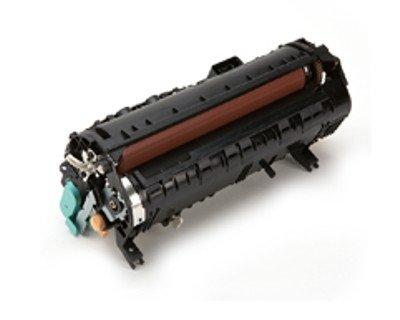 (Xerox - Fuser kit ( 110 V ) - for Phaser 6500DN, 6500N, 6500V_NC, WorkCentre 6505DN, 6505N -)
