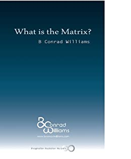 What is the Matrix? (Jean Baudrillard and Simulation in the Wachowski Brothers' Matrix Series) by [Williams, B Conrad]