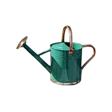 Gardman 8331 Galvanized Watering Can with Copper Accents, in hunter green, 1.9 Gallon