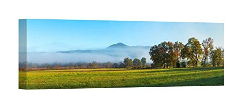 Easy Art Prints Panoramic Images's 'Fog Over Mountain, Cades Cove, Great Smoky Mountains National Park, Tennessee' Canvas Art 36 x 12