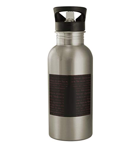 Red Wine #104 - Funny Humor 20oz Silver Water Bottle ()
