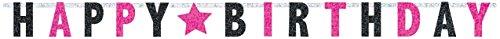 Prismatic Letter (Elegant Black and Pink Birthday Party Prismatic Letter Banner Decoration, Black/Pink , 8 Feet x 6 1/2
