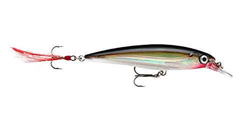 (Rapala X-Rap Jerkbait 10 Fishing lure (Silver , Size- 4))