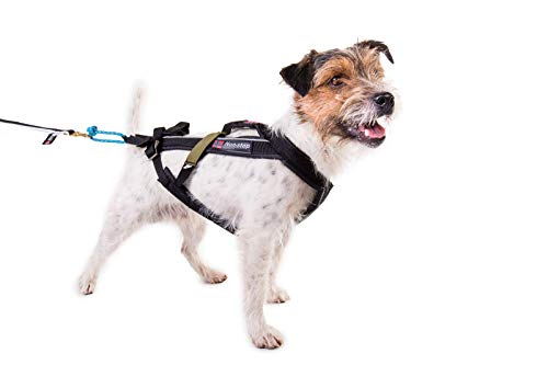 Non-stop dogwear Freemotion Harness (7) by Non-stop dogwear (Image #4)