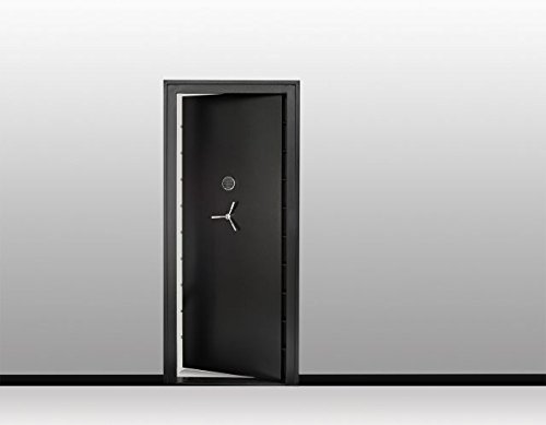 SNAPSAFE Aux Vault Door 32x80- Safe Door Steel Vault Doors