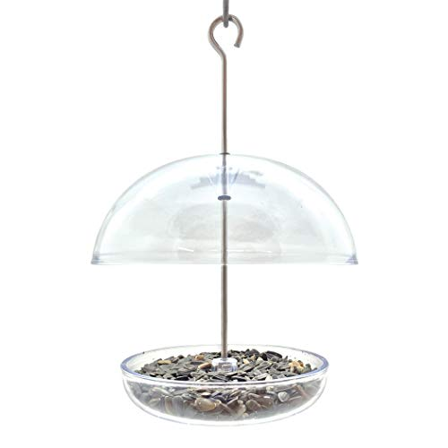 Droll Yankee CUTE Chickadee Feeder Small Domed Multi-purpose Bird Feeder for Mealworms, Seed, or Fruit ()